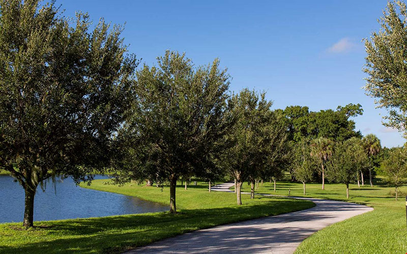 Walking Trails at Cypress Walk